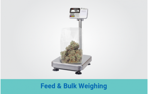 Feed & Bulk Weighing